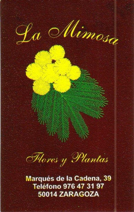 la-mimosa