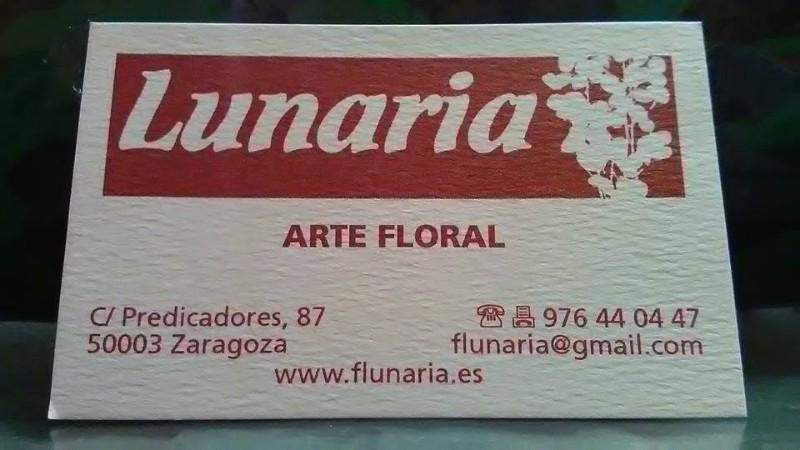 floristeria-lunaria