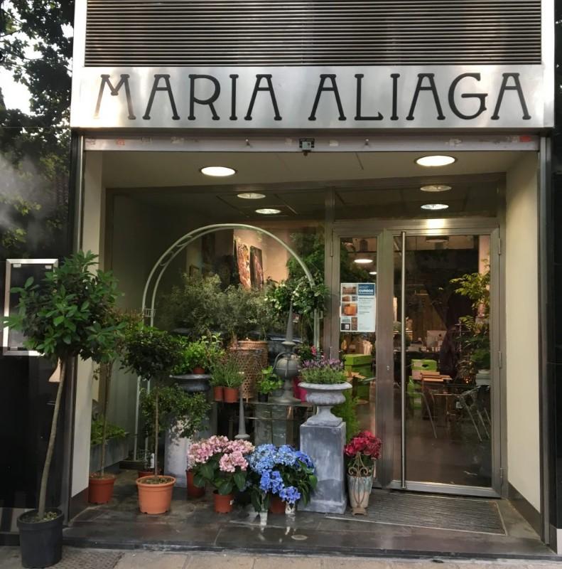maria-aliaga-flores-fachada