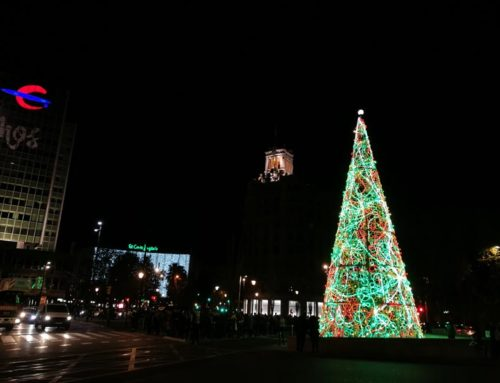 El árbol de Navidad de 20 metros ya preside la plaza Paraíso de Zaragoza.